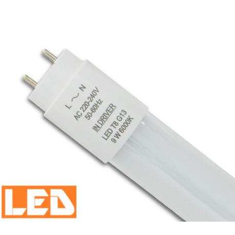 Świetlówka LED T8 9W 6000K