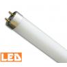Świetlówka liniowa LED T8 10W, 6000K, 60 cm Prescot
