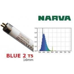 Świetlówka Narva T5 24W/0182 Blue 2