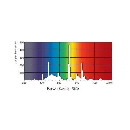Świetlówka Philips Master TL5 HO 54W/865 6500K