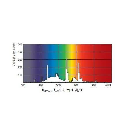 Świetlówka Philips Master TL5 HO 24W/965 6800K