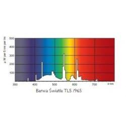 Świetlówka Philips Master TL5 HO 54W/965 6800K