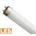 Świetlówka liniowa LED T8 7W 4000K, 44 cm Prescot