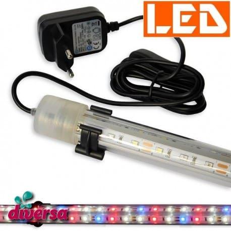 Lampka LED Expert 6W KOLOR Diversa - miniatura - zasilacz - diody kolorowe - do pokrywy o dł. 40cm