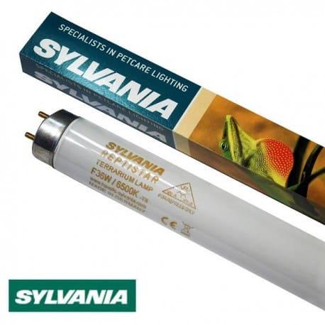 Świetlówka terrarystyczna Sylvania T8 36W Reptistar 6500K | sklep AQUA-LIGHT.pl