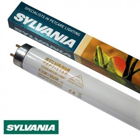 Świetlówka terrarystyczna Sylvania T8 30W Reptistar 6500K | sklep AQUA-LIGHT.pl