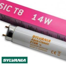 Świetlówka Sylvania T8 14W AquaClassic 5000K - do akwarium | sklep AQUA-LIGHT.pl