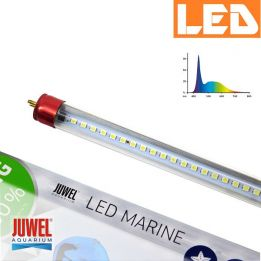Świetlówka LED Marine 590mm 14000K Juwel | sklep AQUA-LIGHT.pl