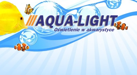 Aqua-Light – blog