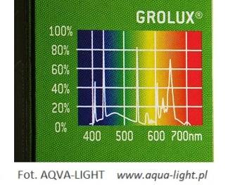 Widmo świetlówek roślinnych Grolux 8500K - do akwarium