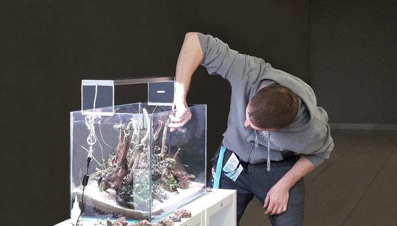 Zakładamy akwarium - podstawowy sprzęt oświetlenie