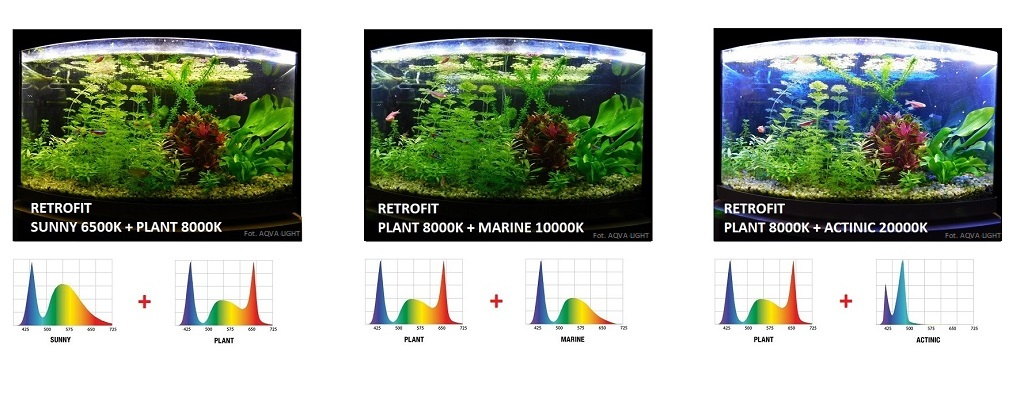Oświetlenie akwarium modułem LED RETROFIT PLANT w kombinacji z wersją SUNNY, MARINE i ACTINIC