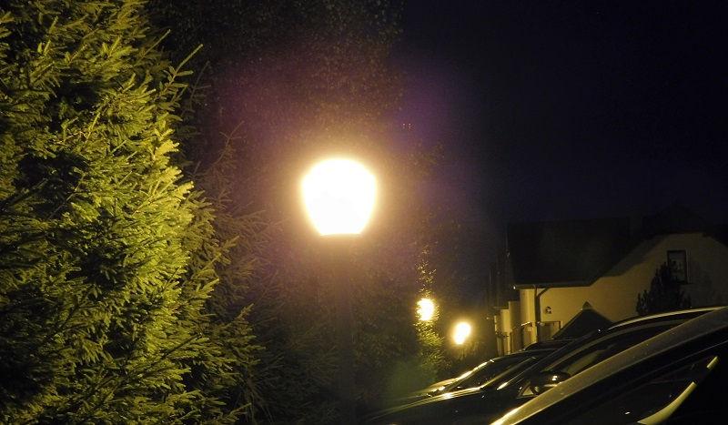 Światło wabiące owady nocą