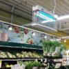 Lampa owadobójcza - sklep, stoisko owoce warzywa | Blog AQUA-LIGHT