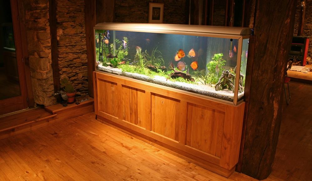 Akwarium z pokrywą