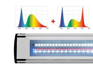 Leddy Slim Duo Sunny+Plant - układ diod LED | sklep AQUA-LIGHT