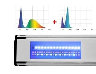Leddy Slim Duo Marine+Actinic - układ diod LED | sklep AQUA-LIGHT