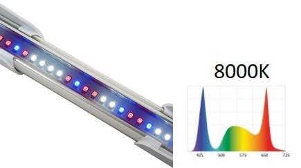 LEDDY SLIM Plant 10W - barwa światła 8000K | sklep AQUA-LIGHT.pl
