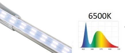 LEDDY SLIM Sunny 32W, barwa światła 6500K | sklep AQUA-LIGHT.pl