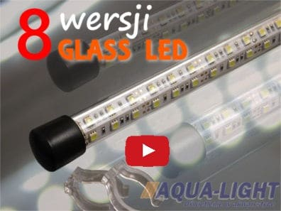 GLASS LED lampki do akwarium i terrarium, 6000K (video, film, prezentacja) - od AQUA-LIGHT