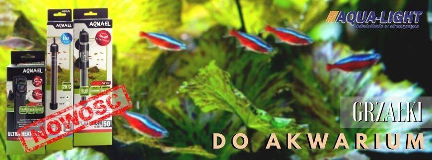 Grzałki akwarystyczne - różne typy i rodzaje! Sprawdź ofertę w sklepie AQUA-LIGHT!
